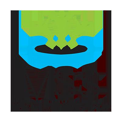 MSS_logo_800